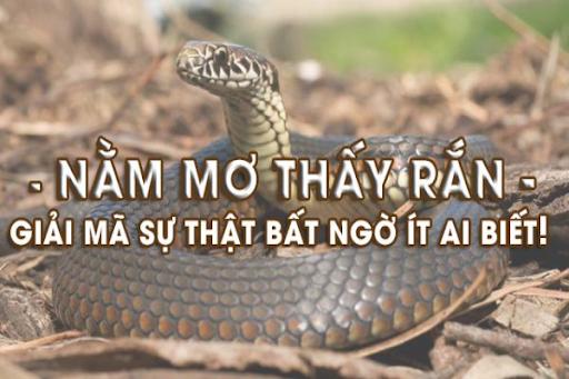 Sự thật bất ngờ khi mơ thấy rắn cắn